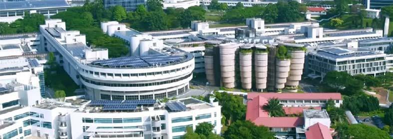 بورسیه دانشگاه فنی نانیانگ سنگاپور - مقطع کارشناسی