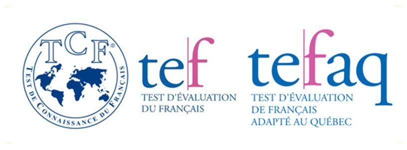 معرفی-آزمون-TEF