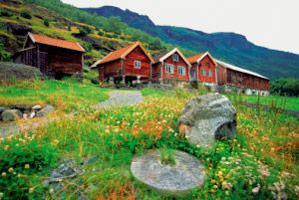 تحصيل در نروژ